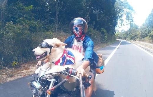 Chủ và chó vi vu trên con xe máy cùng nhau đi đến cùng trời cuối đất.