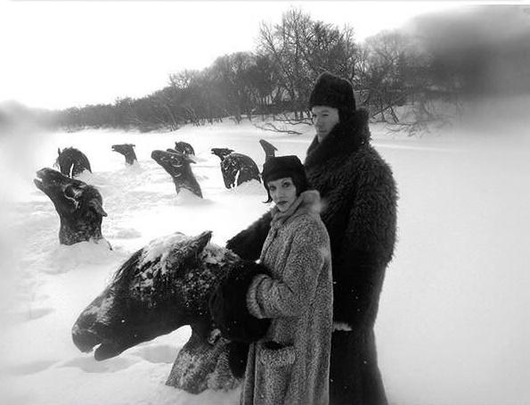 """Mọi chuyện sẽ không có gì đáng kể nếu như xung quanh cặp đôi này không phải là một cái hồ toàn đầu ngựa. Dường như một đàn ngựa xui xẻo nào đó đã sa chân rơi xuống hồ và chết cóng trong làn nước lạnh giá. Thật ra, đây chỉ là cảnh cắt ra từ một bộ phim có tên """"My Winnipeg"""".(Ảnh: Internet)"""