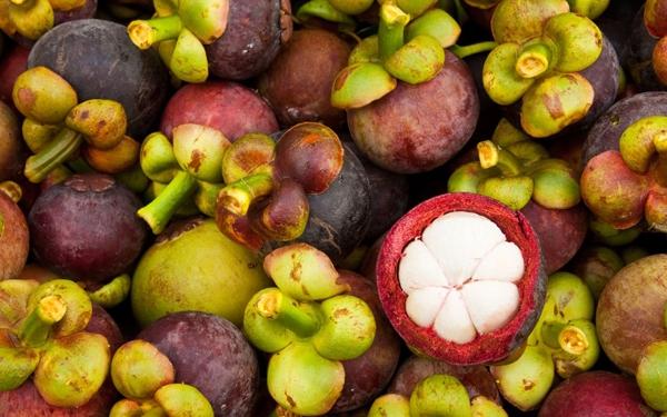Măng Cụt là một loại quả nhiệt đới, thuộc họ bứa,có nguồn gốc ở Mã Lai vàlà một loại trái cây phổ biến ở Đông Nam Á. Tại Việt Nam có những vườn măng cụt cả trăm năm tuổi vẫn được người dân Lái Thiêu (Bình Dương) bảo tồn.Măng Cụt khi chín vỏmàu đỏ sẫm, dày cứng, phía dưới có lá đài, phía đỉnh có đầu nhụy. Trong quả trung bình có 6 hạt, quanh hạt có áo hạt ăn được, vị chua ngọt thanh thanh, hương thơm nhẹ.