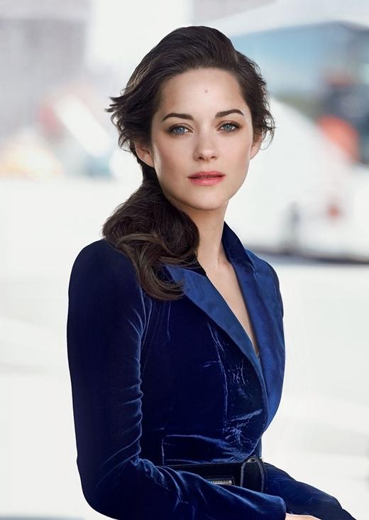 Nữ diễn viênMarion Cotillardbị cho là nguyên nhân dẫn đến việc chia tay của cả hai người.