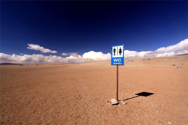 Nhiều người ưu tiên chọn giấy vệ sinh đến sa mạc hơn đồ ăn.