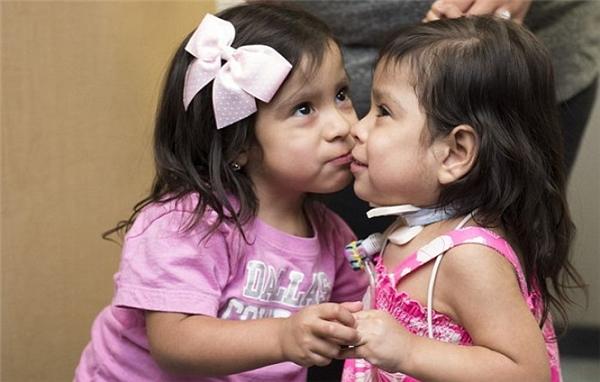 Hai bé giờ đã có thể ôm hôn và mặt đối mặt trò chuyện với nhau.