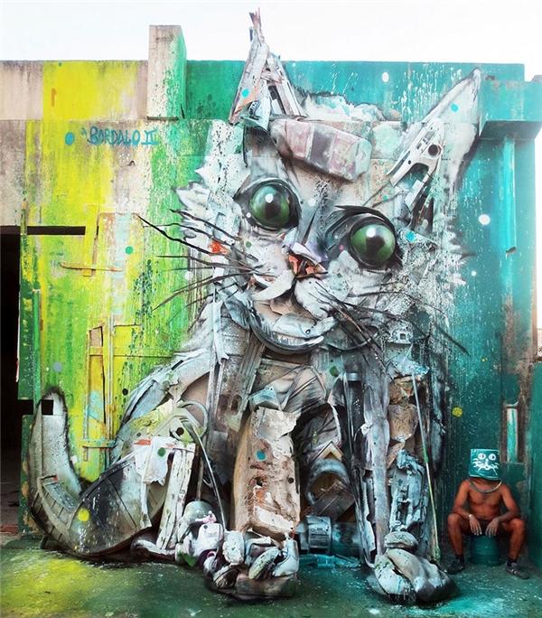 Mèo con. (Ảnh: internet)