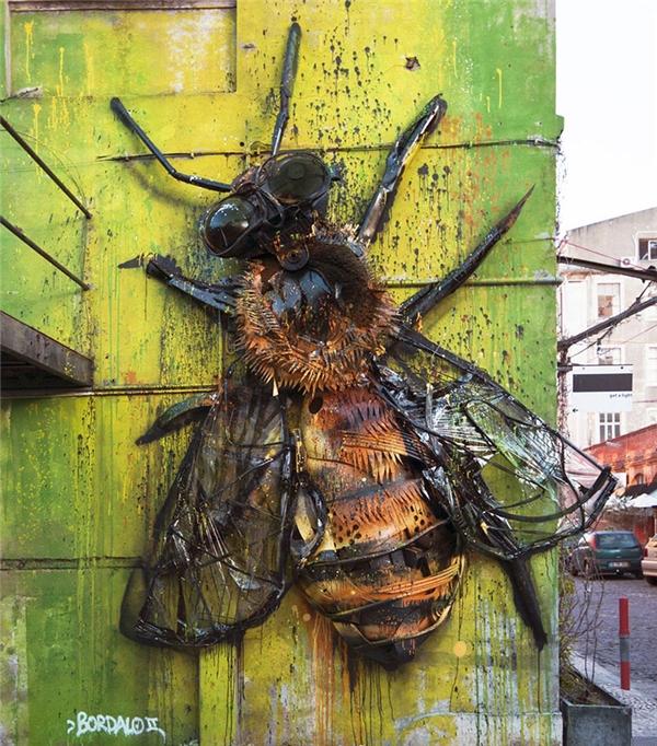 Ong bắp cày. (Ảnh: internet)