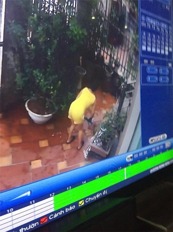 Cả nhà bàng hoàng khi phát hiện ra hung thủ sát hại hai con thú cưng là cô giúp việc mới thuê cách đây hơn một tháng.