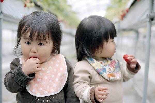 Từng khoảnh khắc vui đùa của hai chị em đều được bố Akira ghi lại