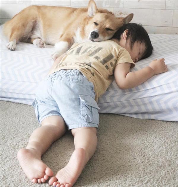 Tuy nhiên, có một đặc điểm mà không cặp anh em người - chó nào khác địch lại cặp đôi này, đó là ngủ.