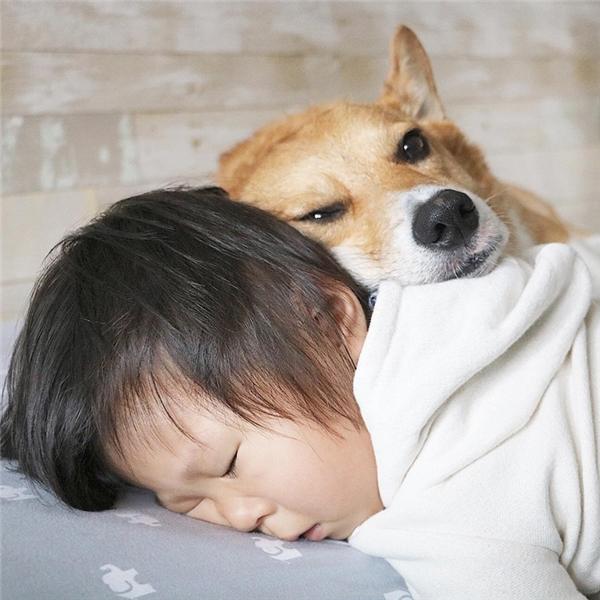 Hai anh em nhà này có thể ngủ bất cứ lúc nào, bất cứ đâu, trong mọi tư thế.