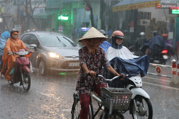 Người phụ nữ đội nón lá dầm mình trong mưa lớn.
