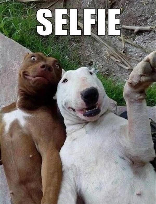 Còn đây là hai thanh niên vui tính tự dìm hàng chính mình. Người ta gọi đó là selfie.