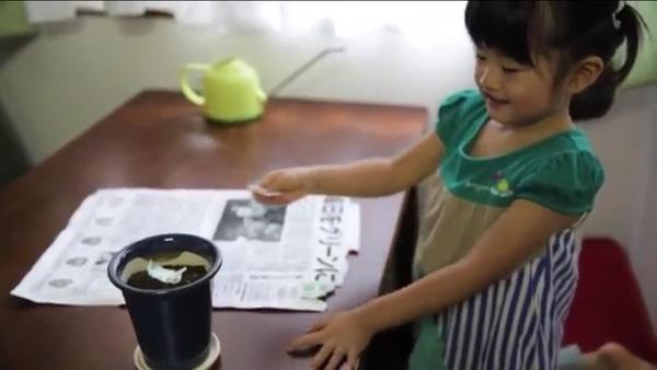 Tờ báo... nở hoa: Phát minh độc nhất vô nhị chỉ có ở Nhật Bản