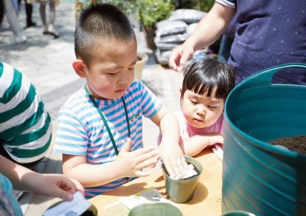 Ngay cả các em nhỏ cũng có thể trồng được cây xanh theo cách không thể dễ hơn thế này.