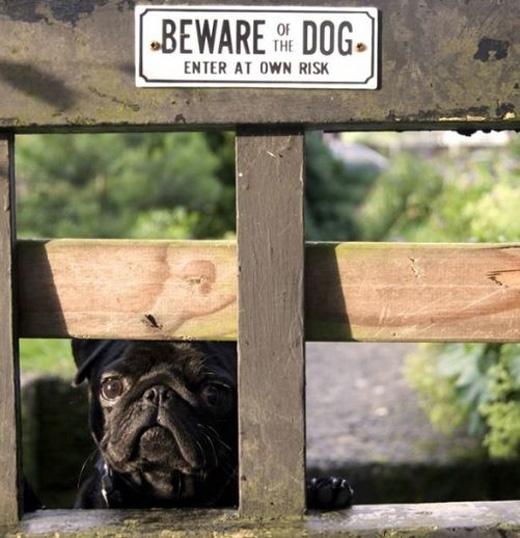 Hãy tự giữ lấy tính mạng của mình nếu có ý định bước qua cổng này.