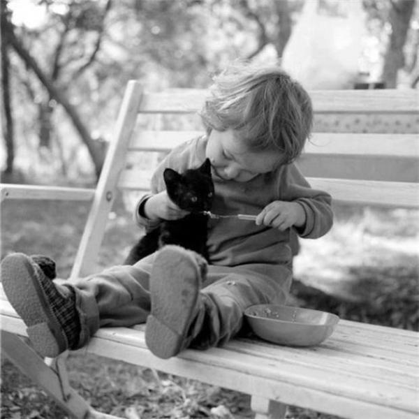 Cùng đi chơi nào, chúng ta sẽ nắm tay nhau đi khắp thế gian.  Họ đang cưng nựng nhau thật tình cảm.   Chúng ta cùng song kiếm hợp bích nào.  Chúng ta là gối ôm lý tưởng của nhau.     Chỗ dựa vững chắc của nhau.  Cùng giúp nhau ngon giấc, chỉ có ở những người bạn tri kỷ.