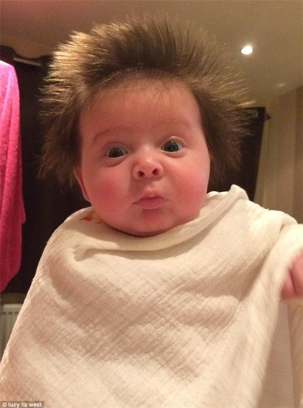 """Lucy West - người đăng ảnh, nói rằng: """"Ngày mai, béLottie Toole sẽ được 12 tuần tuổi, dù cô béra đời sớm 5 tuần nhưng lại có rất nhiều tóc,Lottie Toole càng lớn thì chúng càng mọc dài ra thêm""""."""