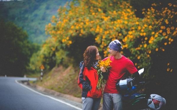 Đoạn đường đèo dẫn lên đỉnh Langbiang tràn ngập sắc vàng của hoa Dã Quỳ.