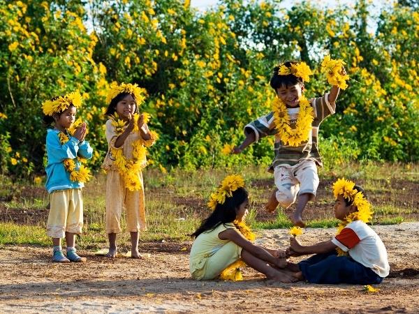 Đắm chìm với những cung đường hoa Dã quỳ rực rỡ tháng 10 ở Đà Lạt