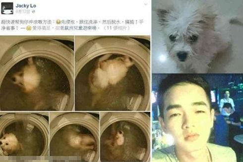 Facebook đã quyết định khai tử trang cá nhân của Jacky Li vì lấy việc ngược đãi động vật làm thú vui.
