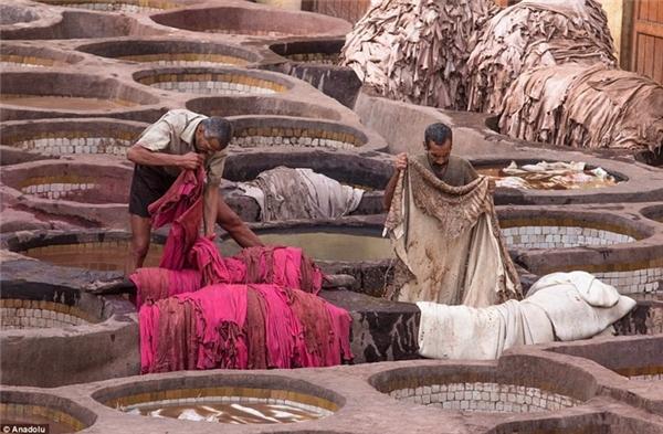 Các công nhân ở đây phải lao động dưới tiết trời nóng bức khắc nghiệt kèm theo mùi hôi thối nồng nặc của những tấm da chưa qua xử lí và mùi thuốc nhuộm. (Ảnh:Dailymail)