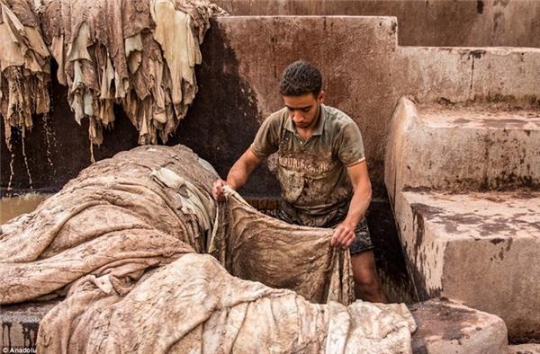 Công nhân còn dùng dầu ôliu để làm bóng da. (Ảnh:Dailymail)