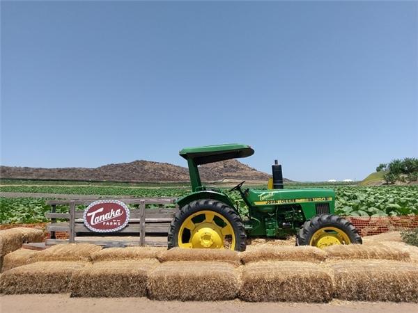 Máy cày và những khối rơm vàng ấm áp đúng chuẩn như phim về nông trại của Mỹ.