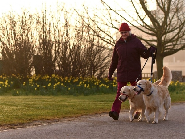 Chó là nguồn cảm hứng giúp con người vực dậy tinh thần. Ảnh: Ben Pruchnie.