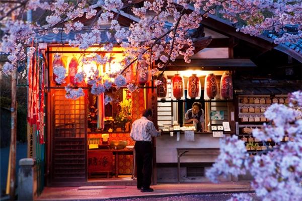 Trong mắt nhiều người, văn hóa và con người Nhật Bản đẹp vô cùng.
