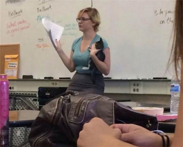 Tình cờ găp một bé mèo đi hoang thế là cô bế luôn em ấy đến lớp.