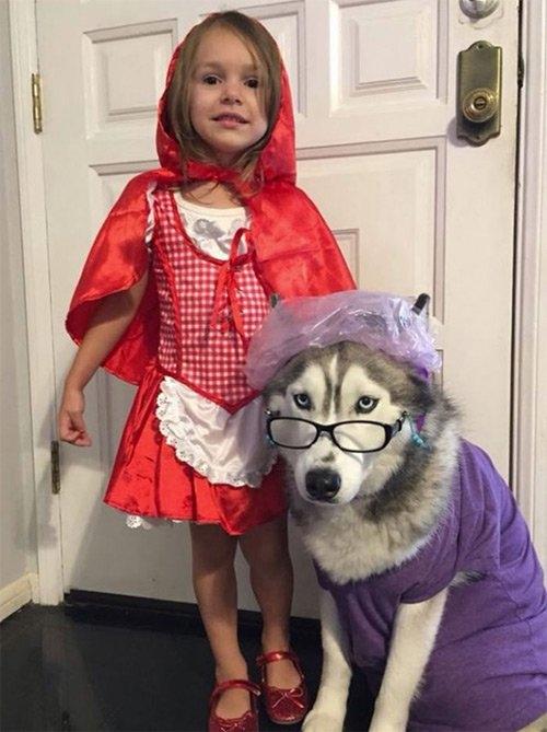Boss năm nay được lên chức bà cùng với cô bé quàng khăn đỏ do sen đóng đi chơi Halloween nè.