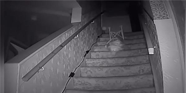 Sau tiếng động phát ra từ căn gác không người, họ nhìn thấy chiếc ghế rơi xuống cầu thang. (Ảnh: chụp màn hình)