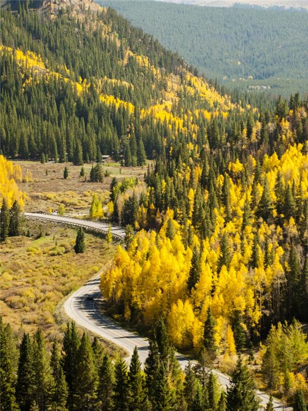 Breckenridge, Colorado: Nằm ngay dưới chân rặng núi Tenmile, một phần của dãy Rocky Mountains nổi tiếng, nên nơi đây là địa điểm lý tưởng cho những ai yêu thiên nhiên và du lịch bụi với những đồi núi, sông suối, đường mòn rợp lá thu vàng rực.