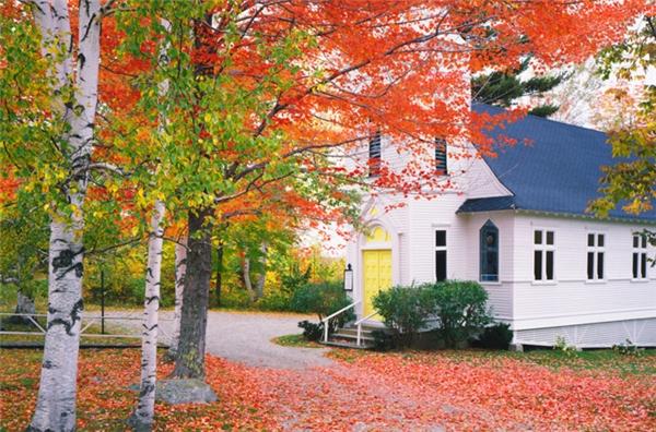 Sugar Hill, New Hampshire: Đây là một trong những thị trấn thưa thớt dân số nhất và trẻ tuổi nhất ở New Hampshire, thế nhưng Sugar Hill lại là một trong những nơi đẹp nhất với hàng dãy những cây phong đường xum xuê. Khi thu sang, thị trấn này hoàn toàn bị vùi lấp trong một gam màu rực rỡ.