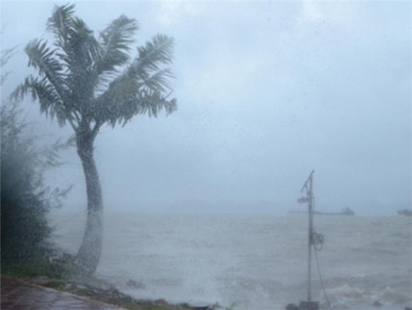 Các địa phương cần chủ động ứng phó với bão lũ. (Ảnh: Internet)