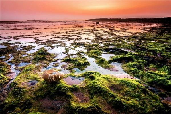 Một bãi biển ở Alentejo, Bồ Đào Nha.