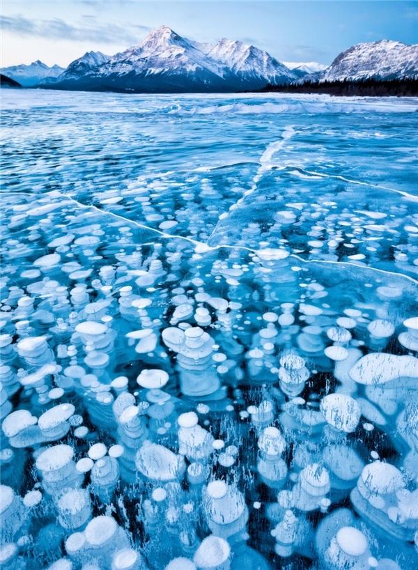 Hồ băngAbraham, Alberta, Canada - Hồ băng đẹp nhất thế giới.Abraham là hồ nhân tạo, thuộc nhánh sông Saskatchewan ở miền Tây bang Alberta.Hồ được hình thành năm 1972 dưới chân núi Canadian Rockies. Abrahamsở hữu kiến trúc băng kìlạvớinhững quả bong bóng sủi loang lổ ẩn giấu dưới mặt hồ.