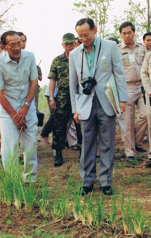 Nhà vua không quyền trượng của Thái Lan.(Ảnh: Internet)