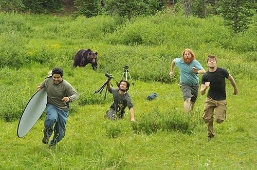 Ai bảo chụp ảnh động vật là dễ?
