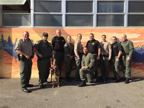 Các cảnh sát tại hạt Sonoma được phen cười bể bụng với tình huống hi hữu này.