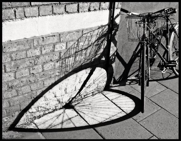 Chụp ảnh là một nghệ thuật, và việc đặt chiếc xe đạp này còn nghệ thuật hơn. (Ảnh: Internet)