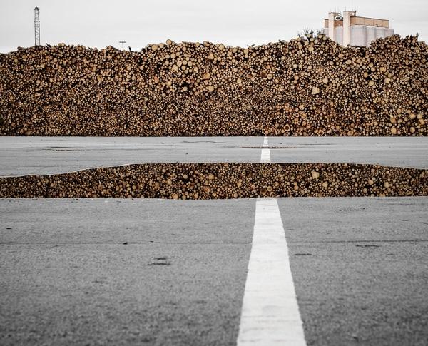 Thật ra chính Những vũng nước trên mặt đường đã phản chiếu hình ảnh đống gỗ đánh lừa thị giác. (Ảnh: Internet)