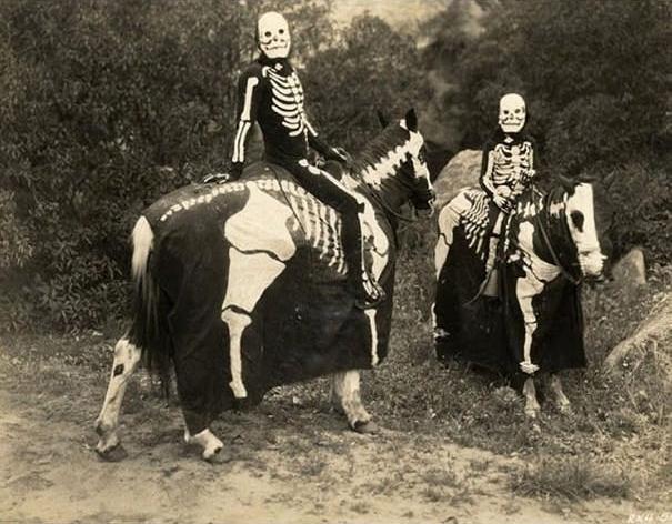 Bộ đồ này dùkhông hù được ngựa nhưngcó thể dọa được người đấy.