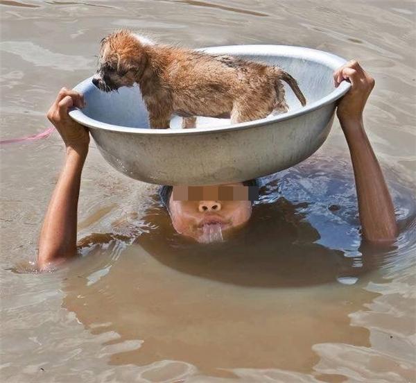 Chú bé cố cứu sống chú chó trong biển nước mênh mông. Ảnh: Xóm nhiếp ảnh