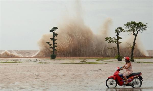 Bão được dự báo sẽ tiến vào Quảng Ninh-Nam Định. (Ảnh: Internet)