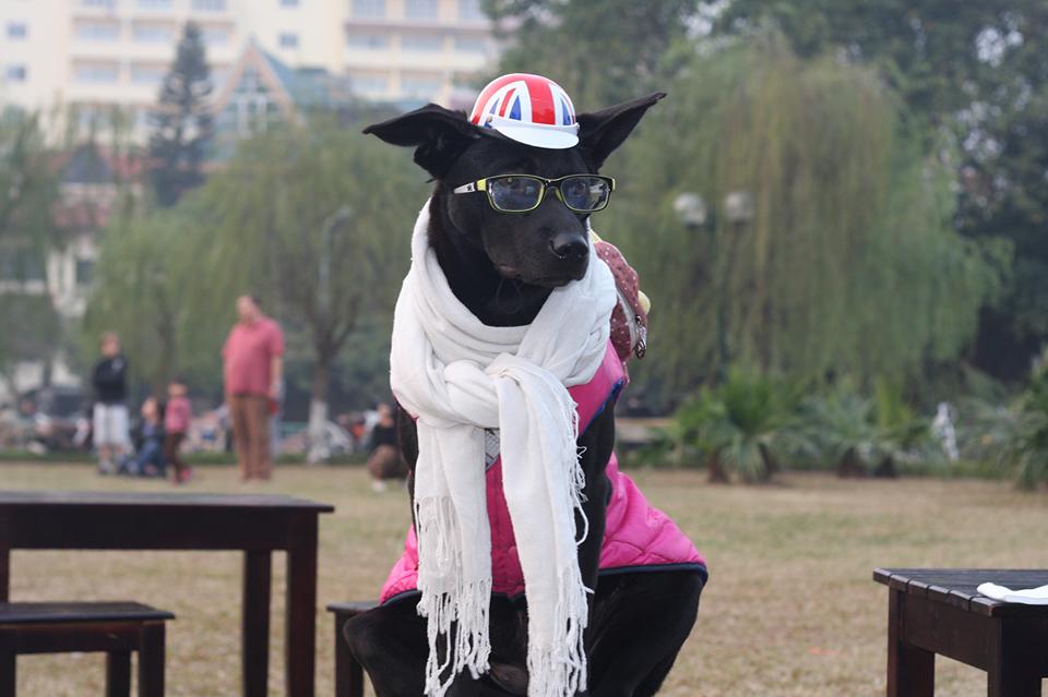 """Khăn quàng cổ màu trắng, áo choàng màu hồng, đội mũ, đeo kính """"nhìn đời xa xăm"""".(Ảnh: Internet, Nguồn: Tổng hợp)"""