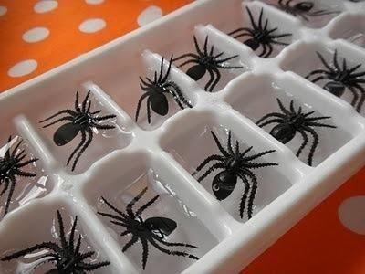 Thêm một vài con nhện vào trong nước đá thế này, đảm bảo sẽ có kẻ thét lên khi uống được nửa cốc nước ngọt cho mà xem.(Ảnh: Viral Nova)