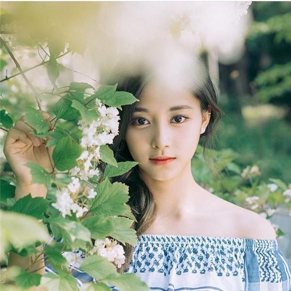 """Nhiều netizen cho rằng, Tzuyu hoàn toàn có thể xếp chung vị trí với những idol đàn chị về khía cạnh nhan sắc, thậm chí còn là """"mối đe dọa"""" của những nữ idol """"tường thành""""."""