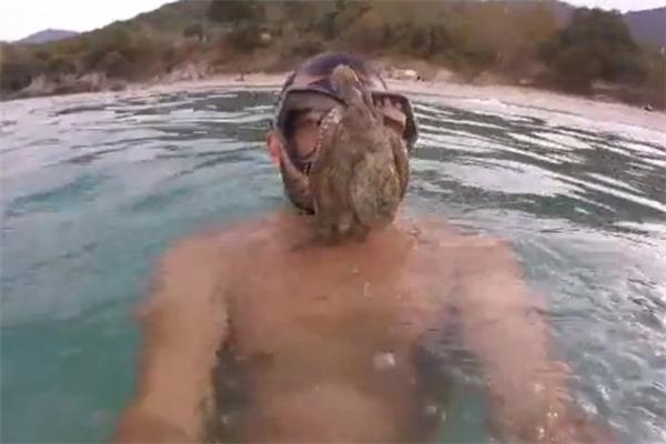 Kinh hoàng với chiêu bạch tuộc tấn công thợ lặn