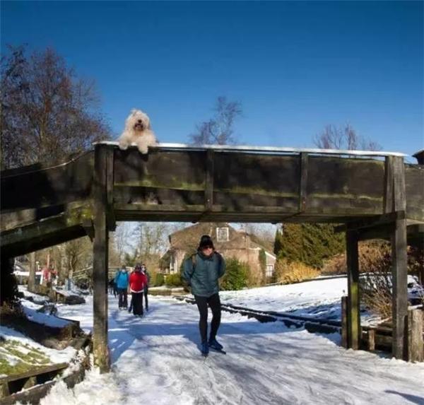 Giethoorn rất yên bình và đẹp mê hồn trong mùa đông.