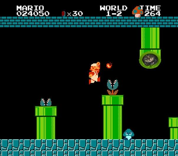 Thần mèo hiển linh, phen này Mario sẽ sớm cứu được công chúa thôi.