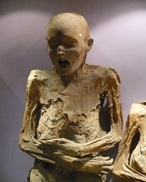 Nhưng điều gì đã khiến họ đau đớn, hoảng loạn như vậy trước khi chết?(Ảnh: Viral Nova)